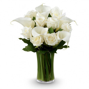 White Elegance buy at Florist