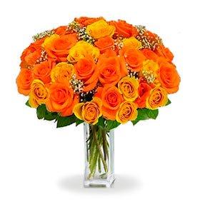 36 Long Stem Orange Roses buy at Florist