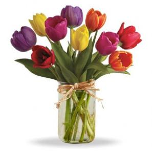 Spring Tulips in Mason Jar buy at Florist